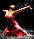 danza libre-tiff